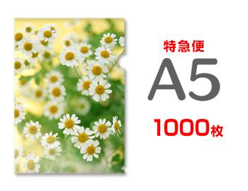 【特急便】A5クリアファイル1000枚(単価61円), Tamao:95cbc60c --- luzernecountybrewers.com