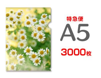 【特急便】A5クリアファイル3000枚(単価31円), A.BOMBER:00cd4cfb --- luzernecountybrewers.com