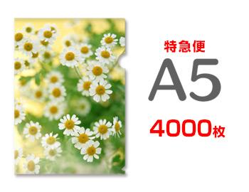 【特急便】A5クリアファイル4000枚(単価26.5円)
