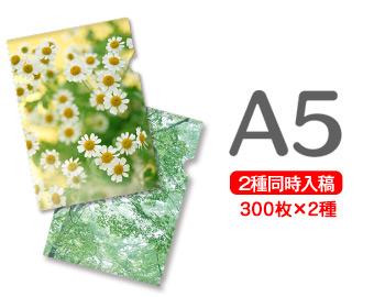A5クリアファイル印刷300枚+300枚=600枚, 赤池町:bb302264 --- luzernecountybrewers.com