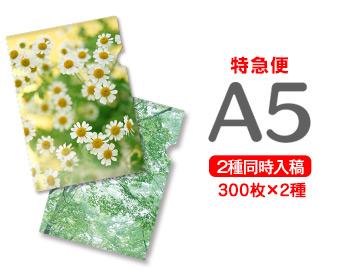【特急便】A5クリアファイル300枚+300枚=600枚, 【絶品】:a9278f64 --- luzernecountybrewers.com
