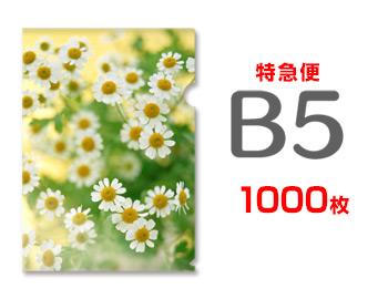 特急便 爆買いセール B5クリアファイル1000枚 単価74円 卓抜
