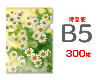 【特急便】B5クリアファイル300枚, 癒す堂:bb2f542e --- luzernecountybrewers.com