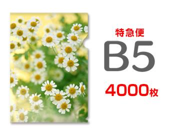 【特急便】B5クリアファイル4000枚(単価37.75円)