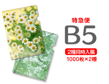 【特急便】B5クリアファイル1000枚+1000枚=2000枚