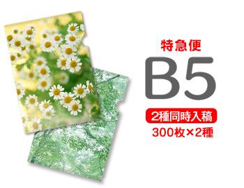 【特急便】B5クリアファイル300枚+300枚=600枚