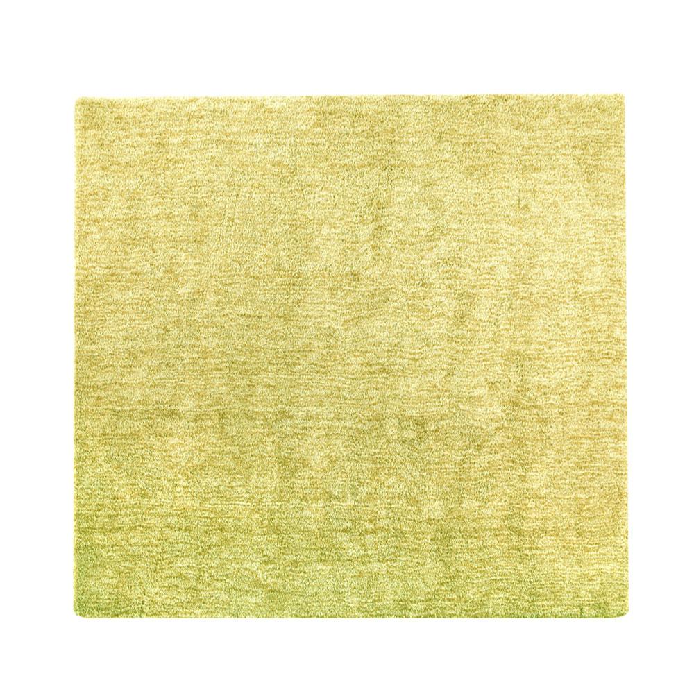 【在庫処分】 カーペット ラグ シャギーラグ ラグマット 絨毯 じゅうたん 生活音軽減 やわらかい 床暖房対応 ホットカーペット対応 ミックスカラー グリーン リビング 春 夏 秋 冬 センターラグ 正方形 おしゃれ 185×185