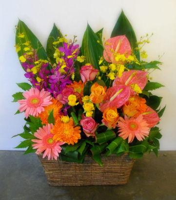 05P04Jul11 フラワーアレンジ (お祝い花 L)  ar10001
