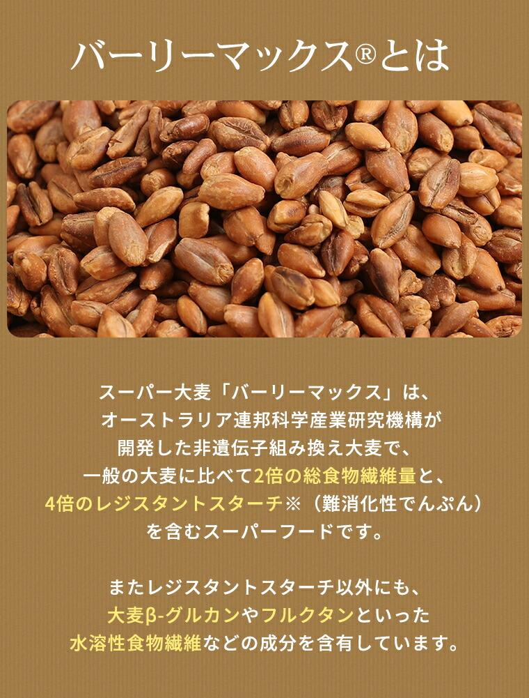 スーパー大麦 ロースト バーリーマックス 100g シリアル 腸活 スーパーフード