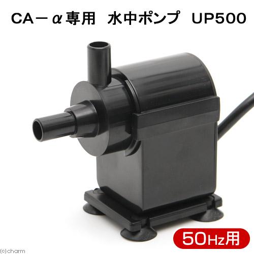 取寄せ商品 CA-α専用 サービス 水中ポンプ UP500 沖縄別途送料 人気の定番 50HZ インペラー付き
