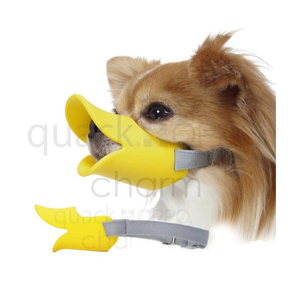 OPPO quackクァック S イエロー 在庫処分 正規品 関東当日便 口輪 犬 ムダ吠え防止 日本