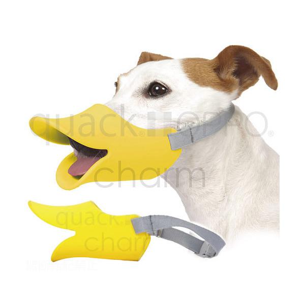 OPPO quackクァック L イエロー 正規品 犬 口輪 ムダ吠え防止 関東当日便