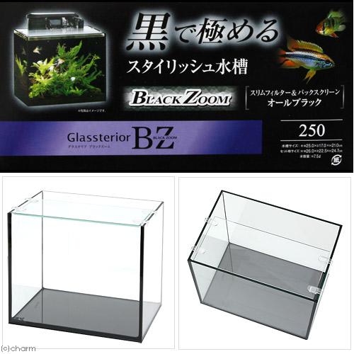 GEX グラステリアBZ 250 お一人様5点限り 関東当日便