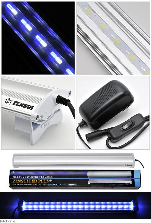 ZENSUI LED 加上 60 厘米闪亮蓝色水族馆照明 LED 灯关东天航班