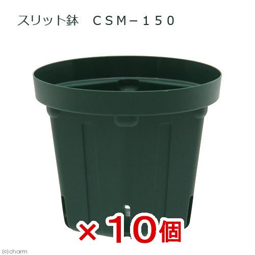 スリット鉢 CSM-150 10個入り 本物 関東当日便 プランター ガーデニング おすすめ特集