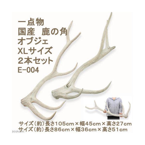 (大型)一点物 国産 鹿の角 オブジェ XLサイズ 2本 E-004 別途大型手数料・同梱不可・代引不可