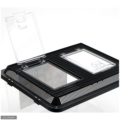 Rearing containers extra large black 6 pieces set places insect cage breeding container insect medaka, oryzias latipes crayfish amphibians such as Kanto day flights