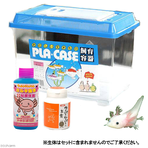 値引き 日本メーカー新品 ウーパールーパー飼育用品セット 関東当日便