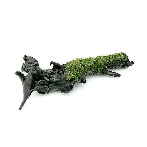 (水草)巻きたて ウィローモス 流木 Lサイズ(約25cm)(無農薬)(5本) 沖縄別途送料