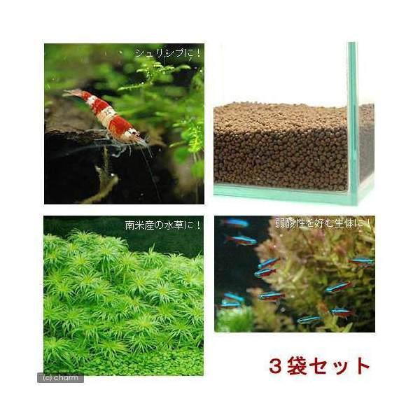 水草とシュリンプの土 こげ茶 10kg (約9リットル) (ノーマルタイプ) 3袋セット 熱帯魚 用品 ソイル 沖縄別途送料 関東当日便