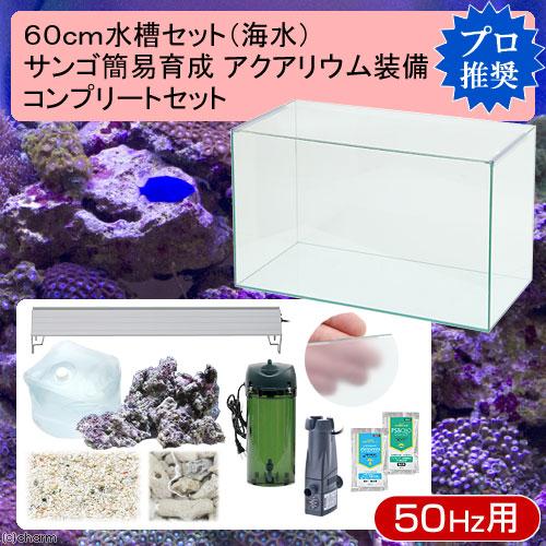 (海水魚)60cm水槽セット サンゴ簡易育成コンプリート 海水アクアリウム(水槽&他11点)プロ推奨セット 50Hz東日本用 本州・四国限定