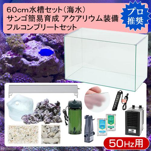(海水魚)60cm水槽セット サンゴ簡易育成フルコンプリート 海水アクアリウム(水槽&他13点)プロ推奨セット 50Hz東日本用 本州・四国限定