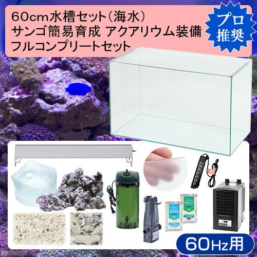 (海水魚)60cm水槽セット サンゴ簡易育成フルコンプリート 海水アクアリウム(水槽&他13点)プロ推奨セット 60Hz西日本用 本州・四国限定