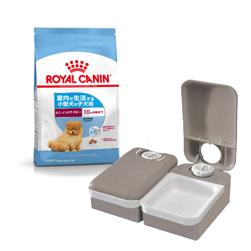 Kanto day flight for two meals of caretaker relief set caretaker feeders  with 800 g of zips for + royal Cannan indoor life puppy