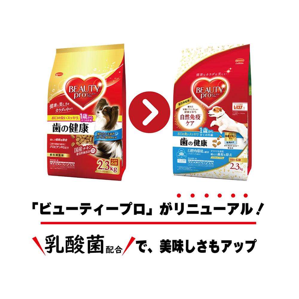 ビューティープロ ドッグ 歯の健康 1歳から 2.3kg(小分け6袋) 関東当日便