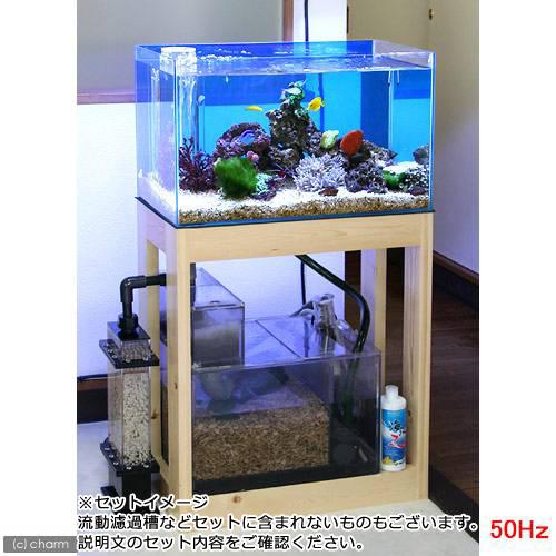(大型)(海水魚)オーバーフロー水槽セット クロミス60 海水スターターセット 50Hz(東日本用) 別途大型手数料・同梱不可・代引不可