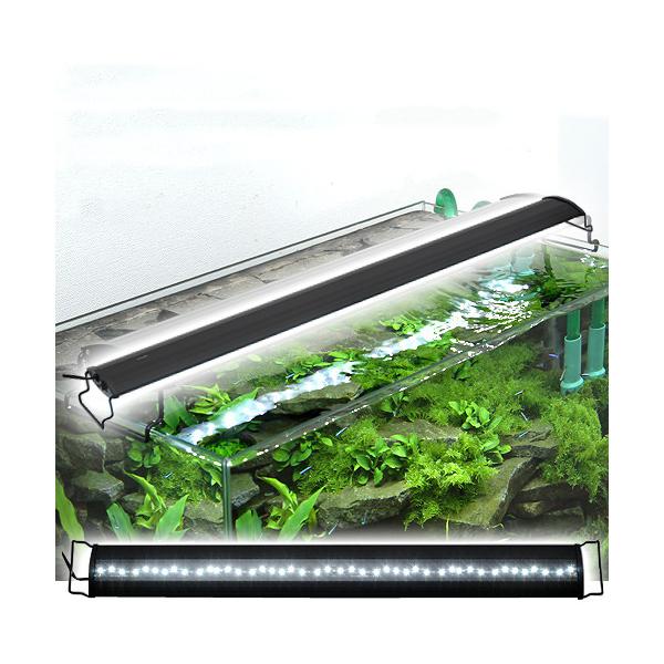 アクロ OVALブラック LED 900 5500lm BRIGHT Aqullo Series 同梱不可 アクアリウム用品 沖縄別途送料 関東当日便