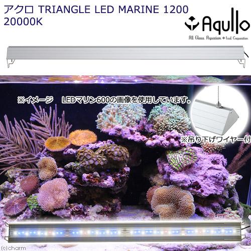 アウトレット品 アクロ TRIANGLE LED MARINE 1200 Aqullo Series 訳あり 沖縄別途送料 関東当日便