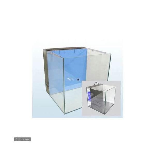 メーカー直送 GLASIA ネクスト NX-300 クリアシリコン(ブラック)(300×300×300)同梱不可・別途送料