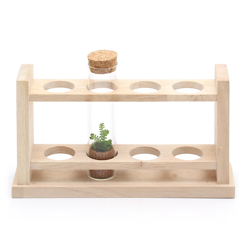 (観葉植物)苔Terrarium スリムガラスセット(木製台座付き) クラマゴケ 説明書付