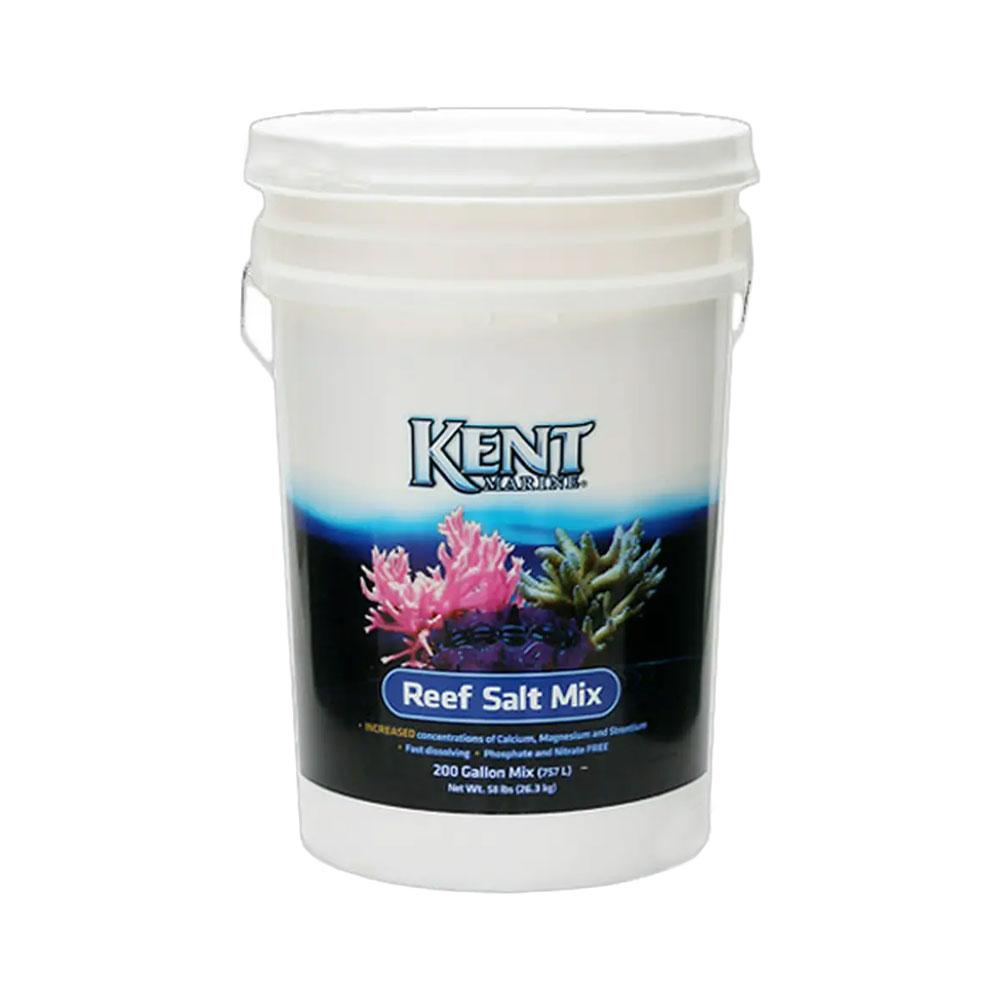 Kent Reaf Salt 200G(760L用) バケツ 沖縄不可