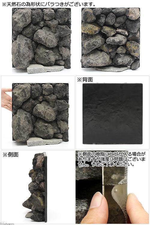 ウォールロック ボルケーノ 30cm水槽用 280×290mm(1個)(形状お任せ) 沖縄別途送料