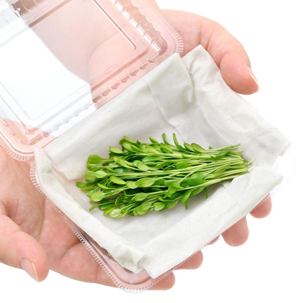 水草 グロッソスティグマ 水上葉 特別セール品 無農薬 半パック分 激安超特価