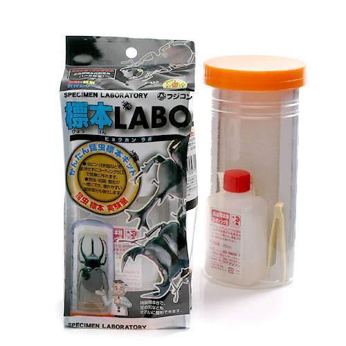 フジコン 標本LABO かんたん昆虫標本セット 1~2匹用 昆虫 直営ストア 激安通販 関東当日便 標本セット 標本用品