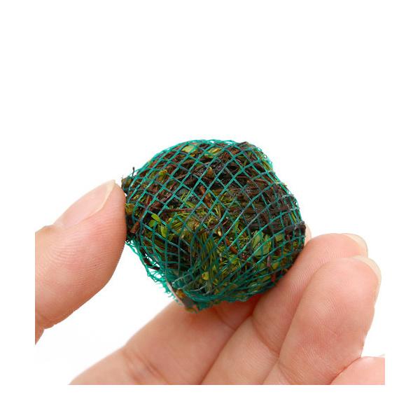 水草 巻きたて 販売実績No.1 初回限定 ベトナムクローバーボール 1個 無農薬