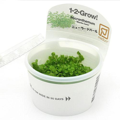 水草 組織培養1-2-GROW 超安い アウトレットセール 特集 ニューラージパールグラス 1カップ トロピカ製 無農薬