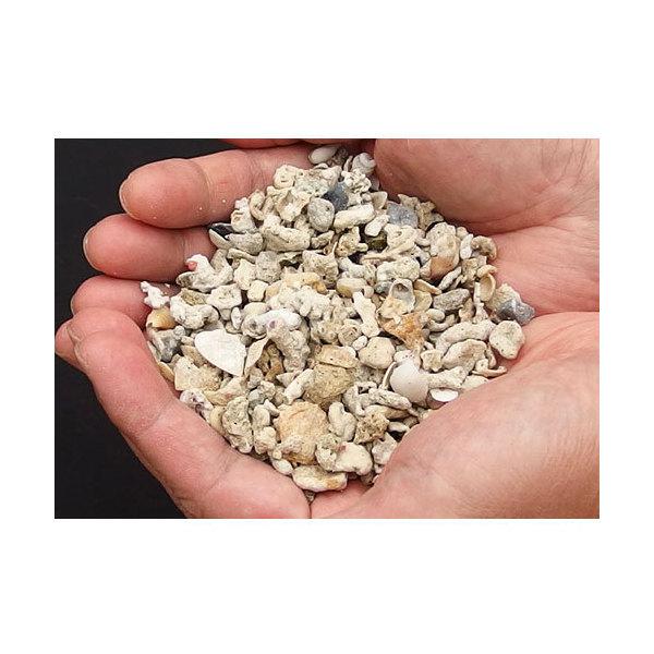 生産者直送 クラッシュコーラル・シェルピース 軽洗浄済み 9kg(約8L) サンゴ砂・貝殻ミックス(0.45個口相当)別途送料