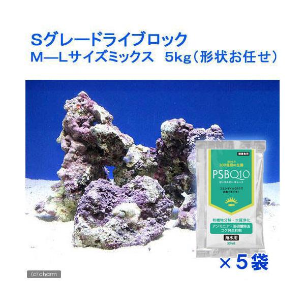 (海水魚)Sグレードライブロック M-Lサイズミックス(5kg)(形状お任せ)+PSBQ10 海水用 150ml  本州・四国限定