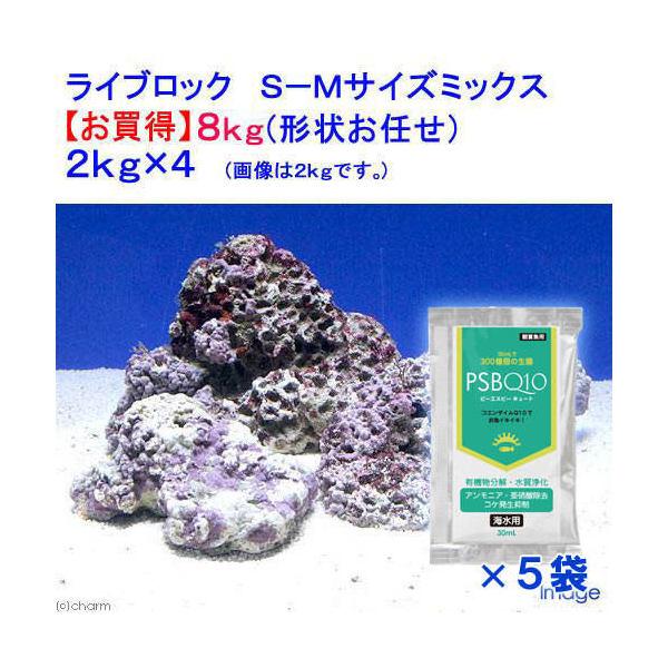 (海水魚)ライブロック S-Mサイズミックス(8kg)(形状お任せ)+PSBQ10 海水用 150ml  本州・四国限定