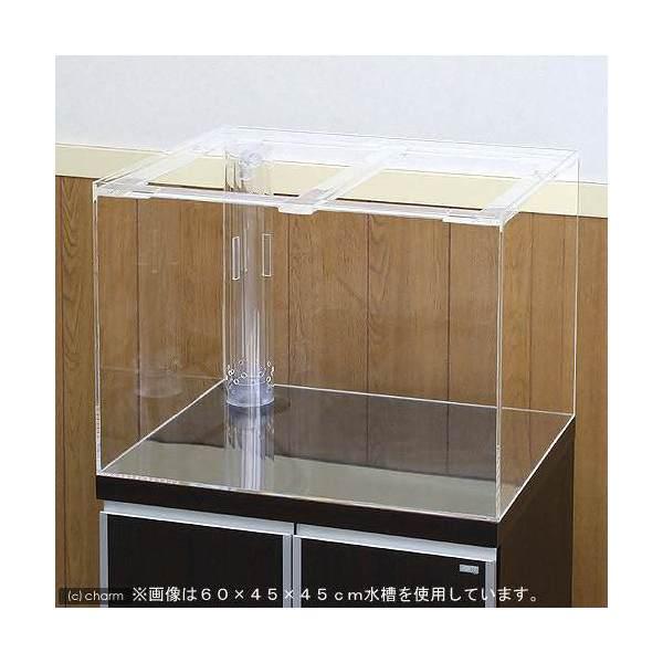 メーカー直送 (受注生産)アクリル水槽 OF三重管付(サイズ:120×45×45cm) 同梱不可 別途送料