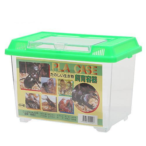 飼育容器 小 緑 225×150×165mm プラケース 関東当日便 カブトムシ クワガタ 店 虫かご 店内全品対象 昆虫