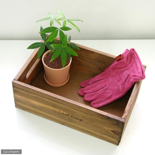 オイルステイン 買い物 ナチュラル木箱 大 W33×D22×H12cm 定番スタイル 関東当日便