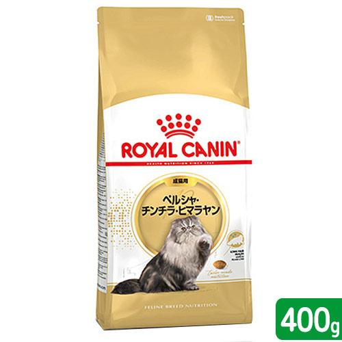 Persian cat 400g