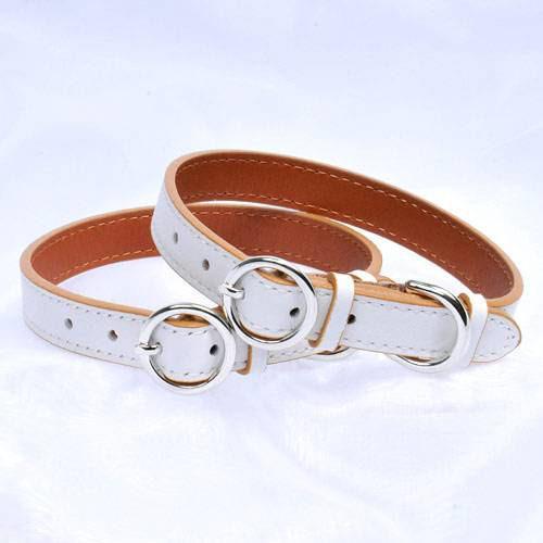小型犬 猫 首輪 最高級カラー S ホワイト/キャメル 犬 猫 本皮首輪 関東当日便