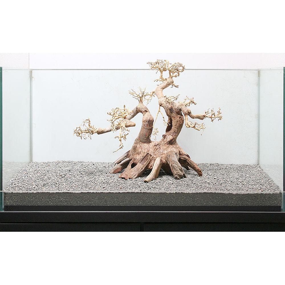 一点物 盆栽流木 大型水槽用 862351 沖縄別途送料 関東当日便