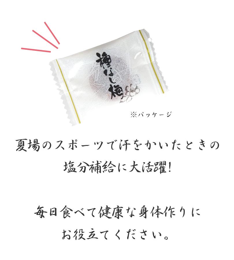 まろやか干し梅 種なし 160g×10袋セット 個包装 ハッピーカンパニー ピロ大